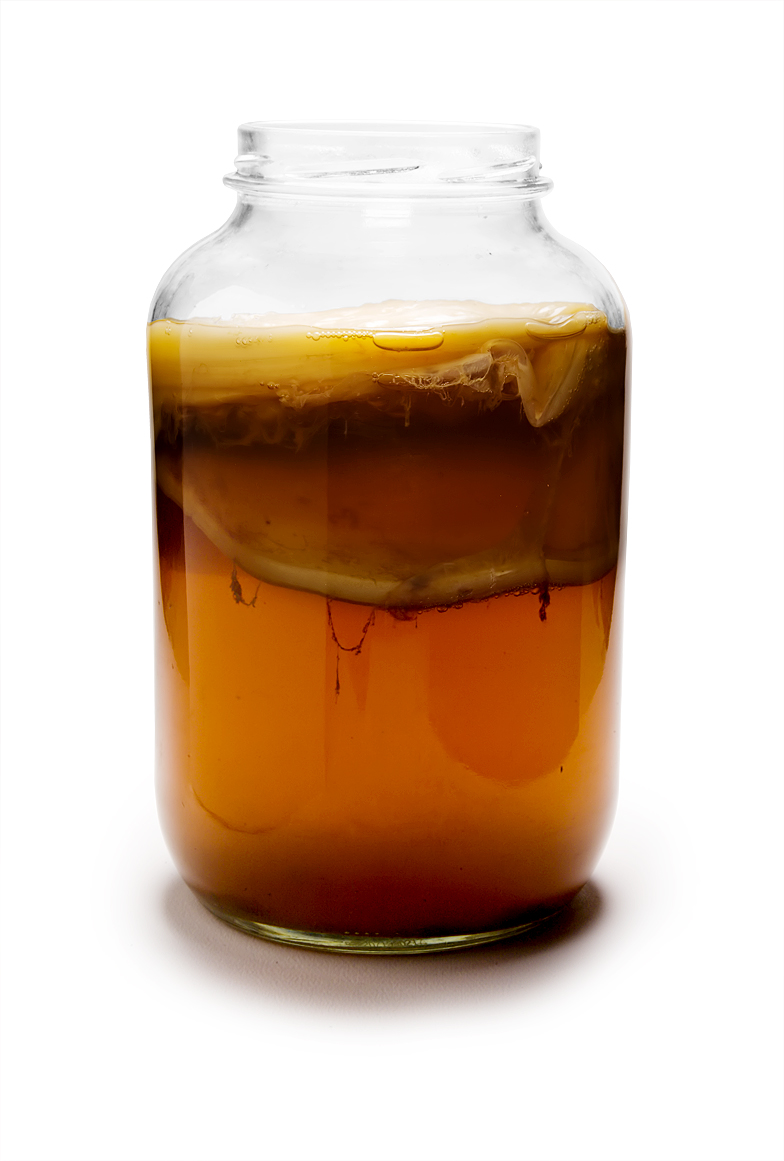 Mature kombucha. YUM! Image reused from Wikipedia.
