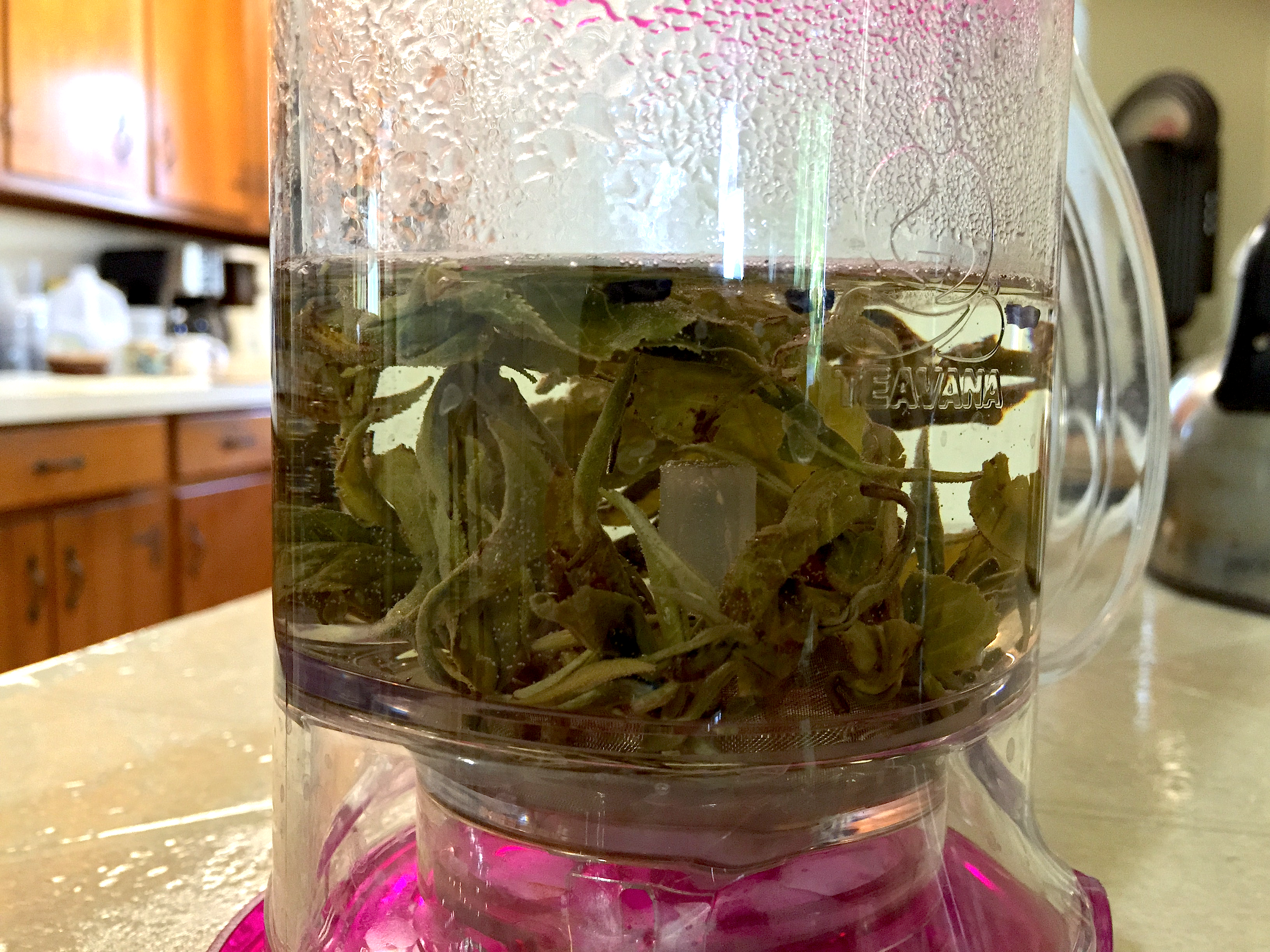 Pan Long Yin Hao Steeping by Jocilyn Mors is licensed under a Creative Commons Attribution 4.0 International License.