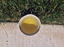 Shincha Tamagawa (Kilogram) ~ liquor by Jocilyn Mors is licensed under a Creative Commons Attribution-ShareAlike 4.0 International License.